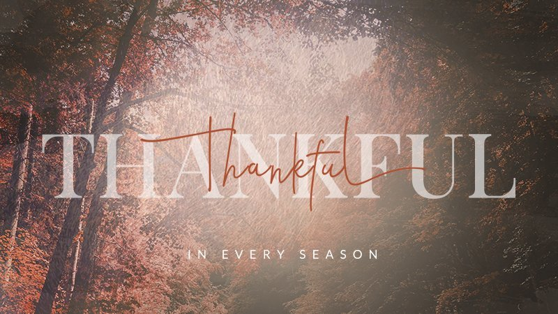 thankful_overhead_one